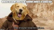 celebrate-may-the-fourth-with-funny-star-wars-memes-36-photos-25-1.jpg
